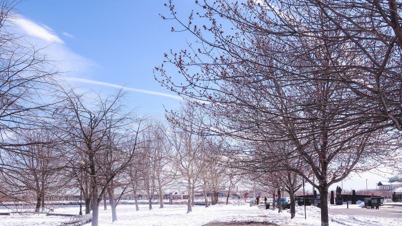 JERSEY CITY NY - Jersey, USA - MARS 22, 2018: filialer av torra träträd i vårtid Fält som täckas med snö arkivfoton