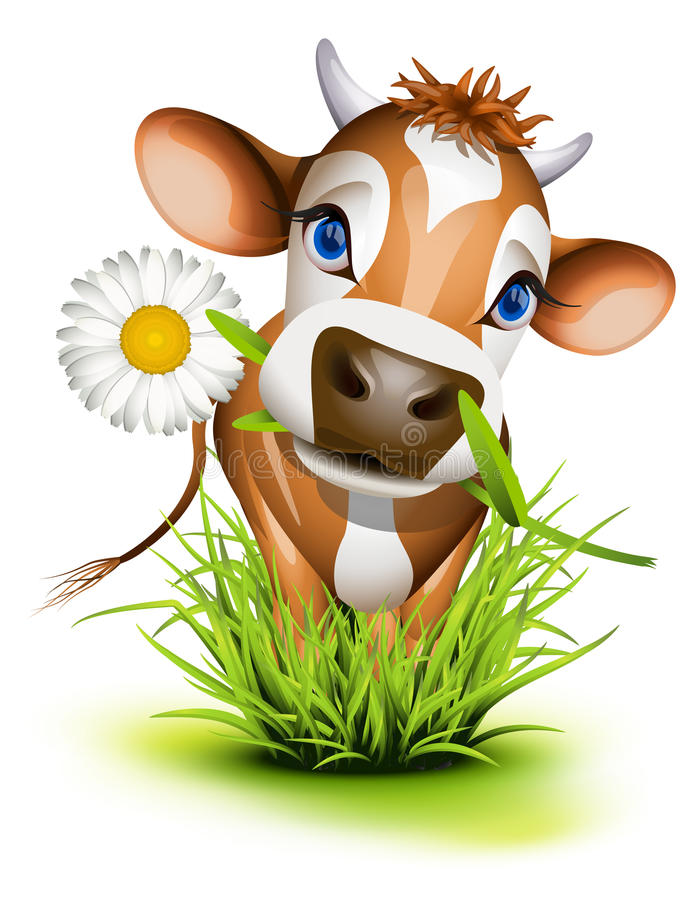 Jersey cow in grass royalty free illustration