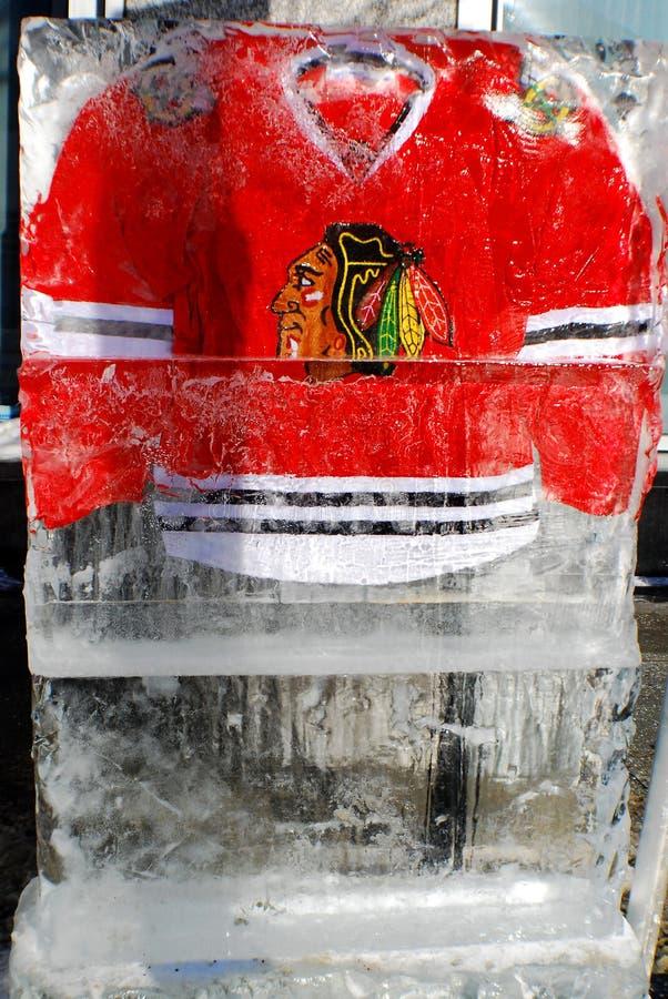 Jersey de Chicago Blackkawks imagen de archivo