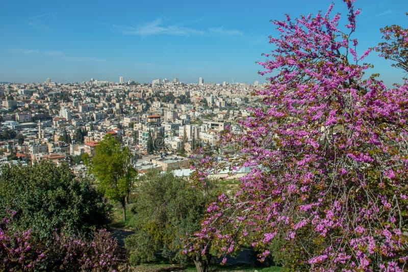 Jerusalén, Israel, vista de la ciudad imágenes de archivo libres de regalías
