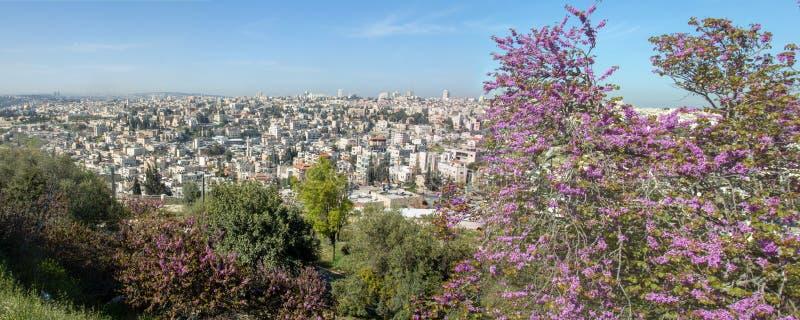 Jerusalén, Israel, vista de la ciudad foto de archivo libre de regalías