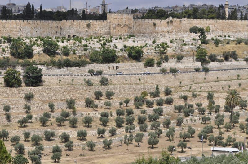 Jerusalem, das Kidrontal und das Golden Gate lizenzfreies stockbild