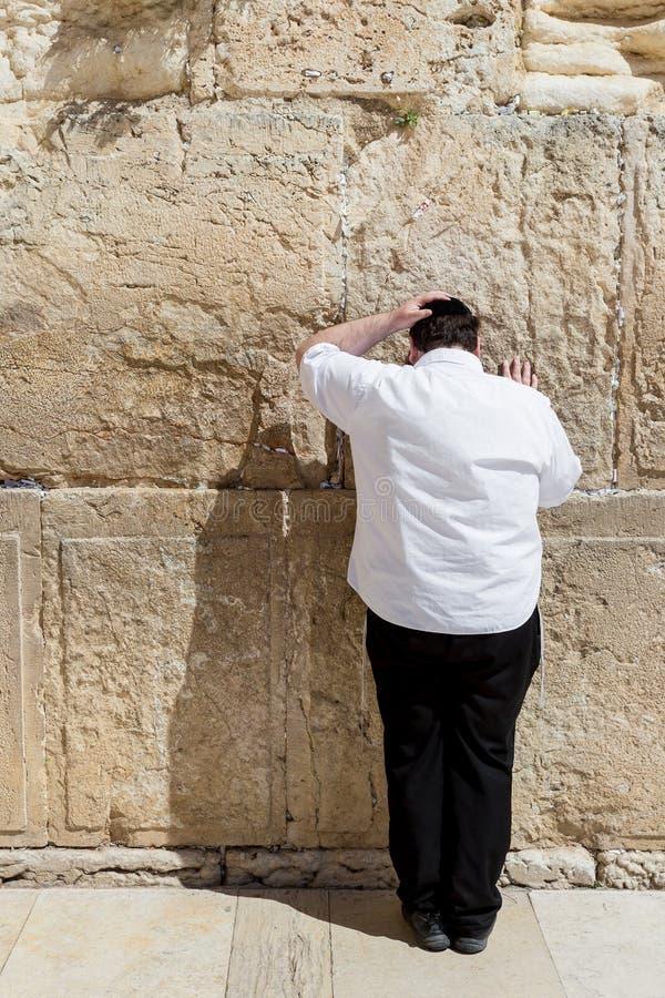 JERUSALEM ISRAEL - MARS 15, 2016: Man att be på den att jämra sig väggen i den gamla staden Jerusalem (Israel) arkivbilder