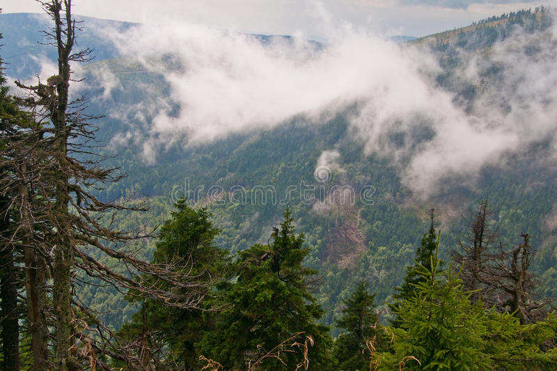 Jesenikybergen dichtbij de Keprnik-heuvel stock foto's