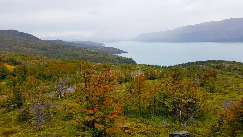 Jesień krajobraz Patagonia, Torres Del Paine park narodowy, Chile obraz royalty free