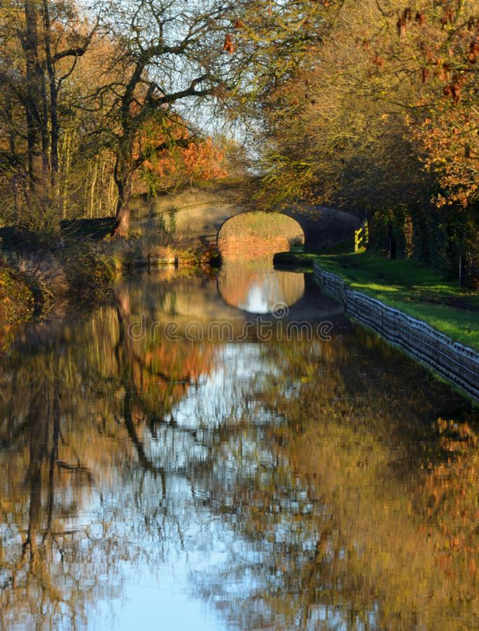 Jesień liści Shropshire Llangollen Zrzeszeniowa Kanałowa gałąź fotografia royalty free