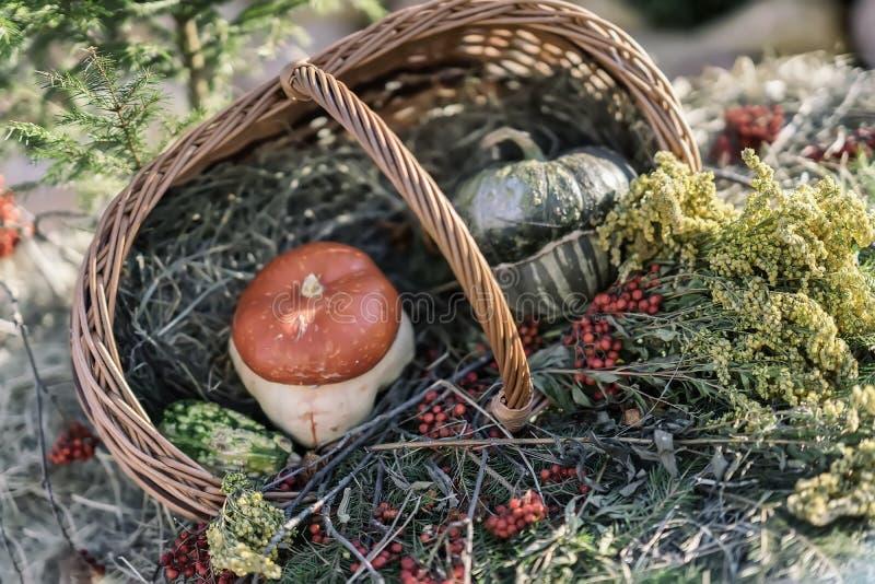 Jesień łozinowy kosz z dekoracyjnymi istnymi baniami, jesieni jagodami i kwiatami, Dziękczynienie dzień, Halloweenowa dekoracja zdjęcia stock
