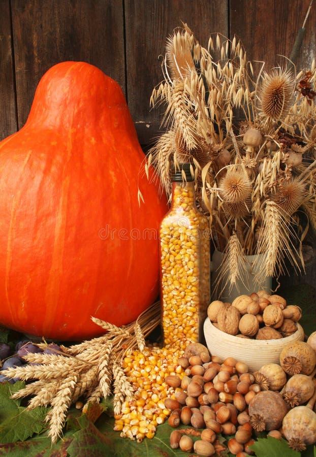 jesień żniwo obraz stock