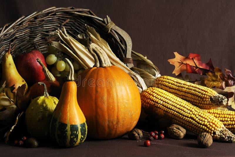 jesień żniwo zdjęcia stock