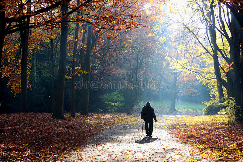 jesień życia mężczyzna seniora odprowadzenie obraz stock