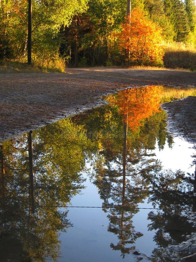 jesień fotografia stock
