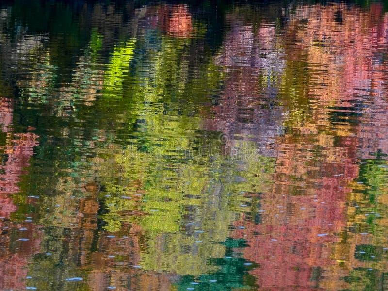 Jesień Barwi Relected na rzece mississippi fotografia royalty free