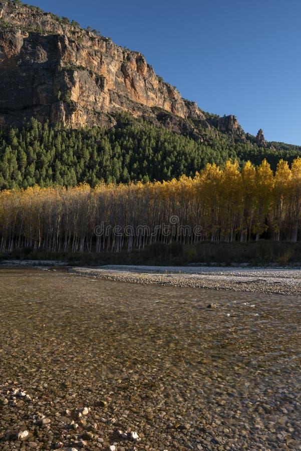 Jesień barwi w Segura rzece, sierra de los Molares, Yeste obrazy royalty free