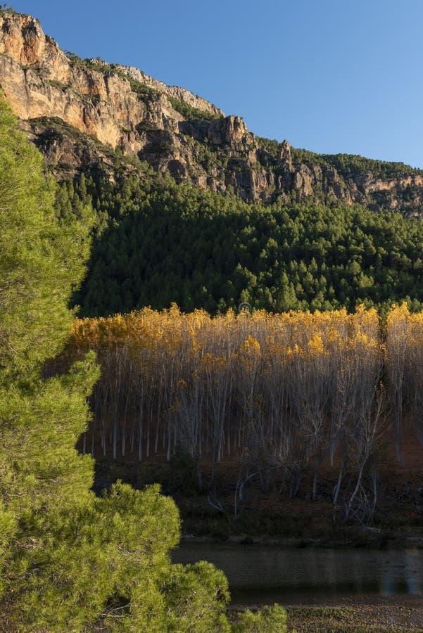 Jesień barwi w Segura rzece, sierra de los Molares, Yeste zdjęcie stock
