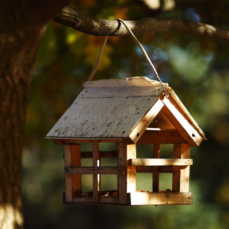 jesień birdhouse las obrazy stock