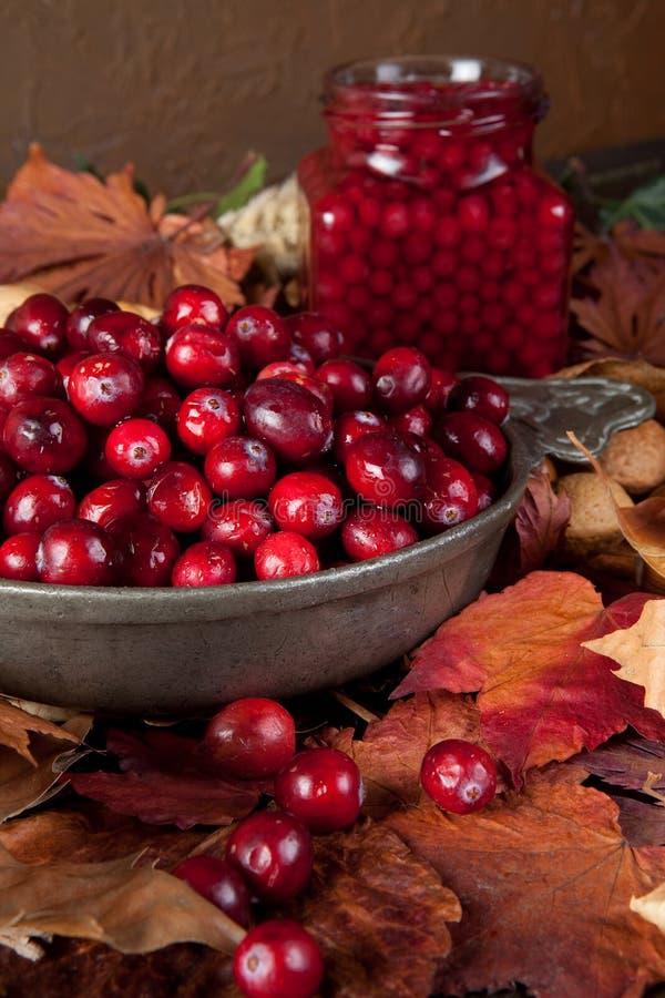 Jesień cranberries liść i zdjęcie stock