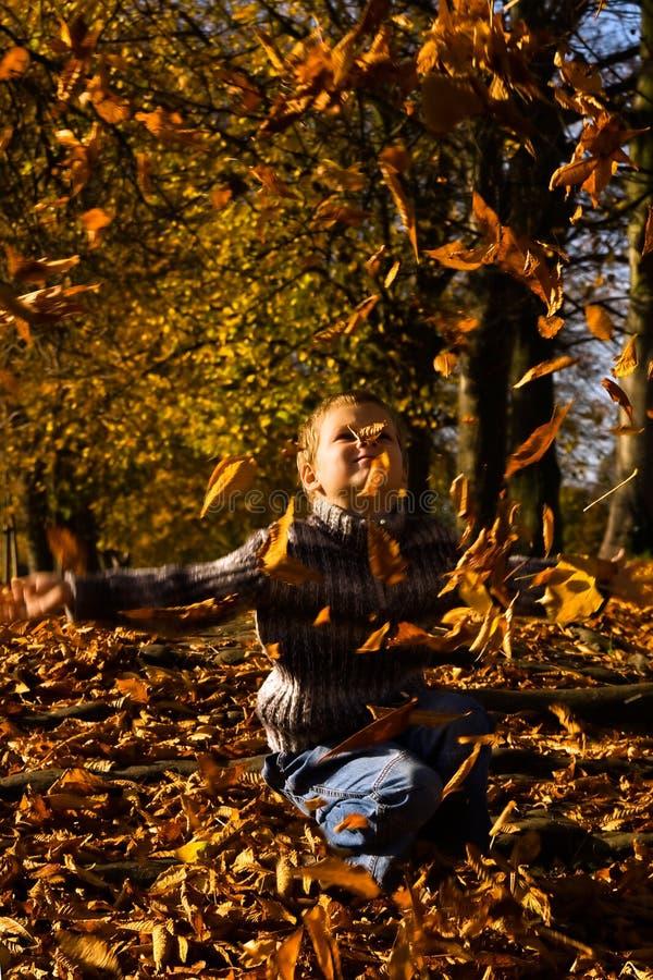 jesień cześć zdjęcia royalty free