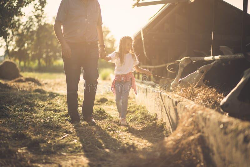 Jesień dzień przy gospodarstwem rolnym obrazy stock
