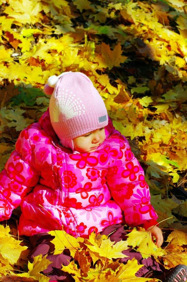 jesień dziecka las mały fotografia stock