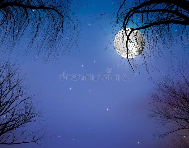 jesień festiwalu pojęcie: Księżyc i gałąź w tle gwiazdy fotografia royalty free