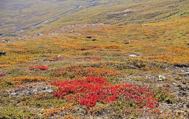 jesień góra obrazy stock