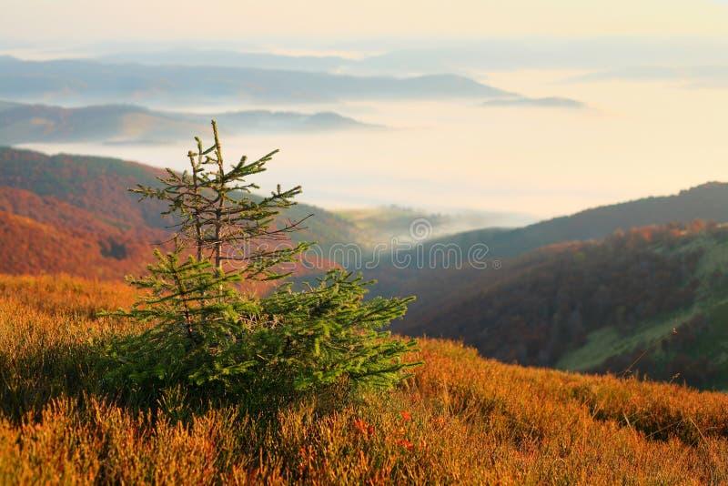 jesień góry obrazy stock