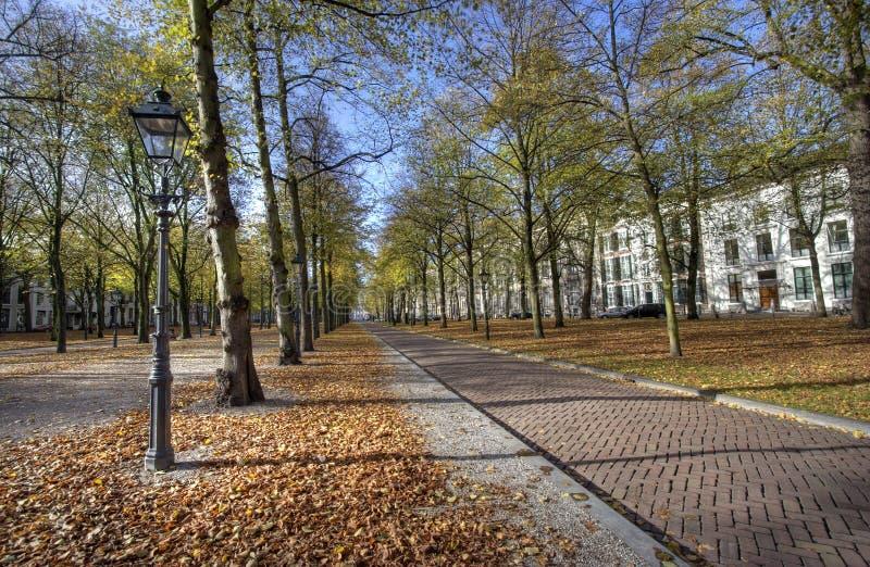 jesień Hague zdjęcia stock