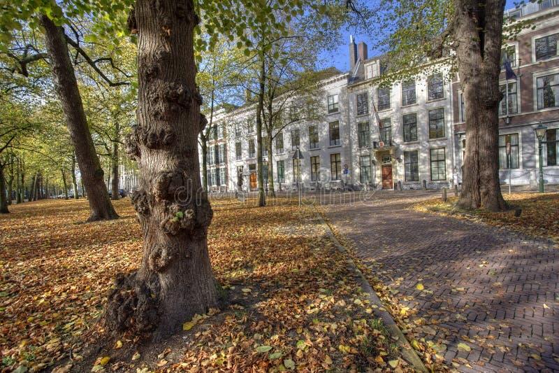 jesień Hague fotografia royalty free