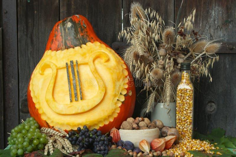 jesień harmonia zdjęcie stock