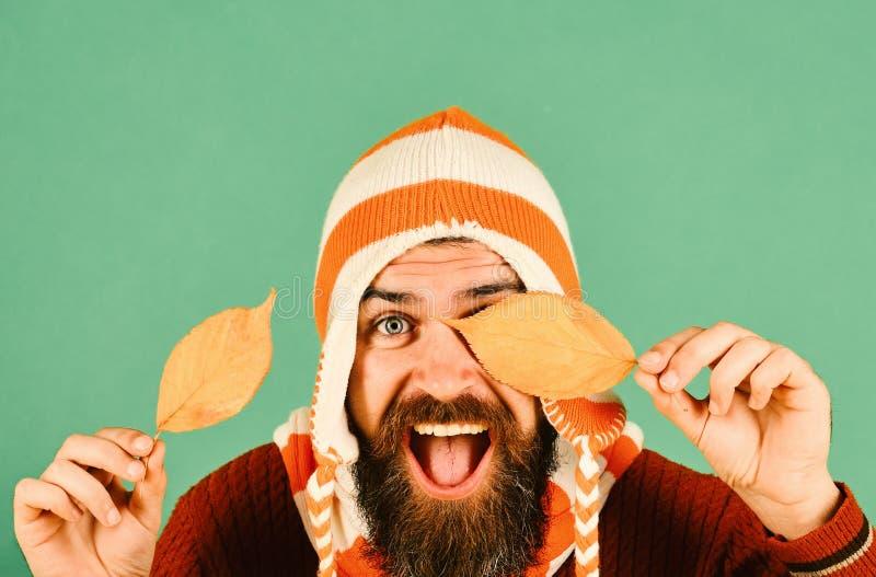 Jesień i spadać liścia pojęcie Sezon jesienny i modnisia styl obrazy stock