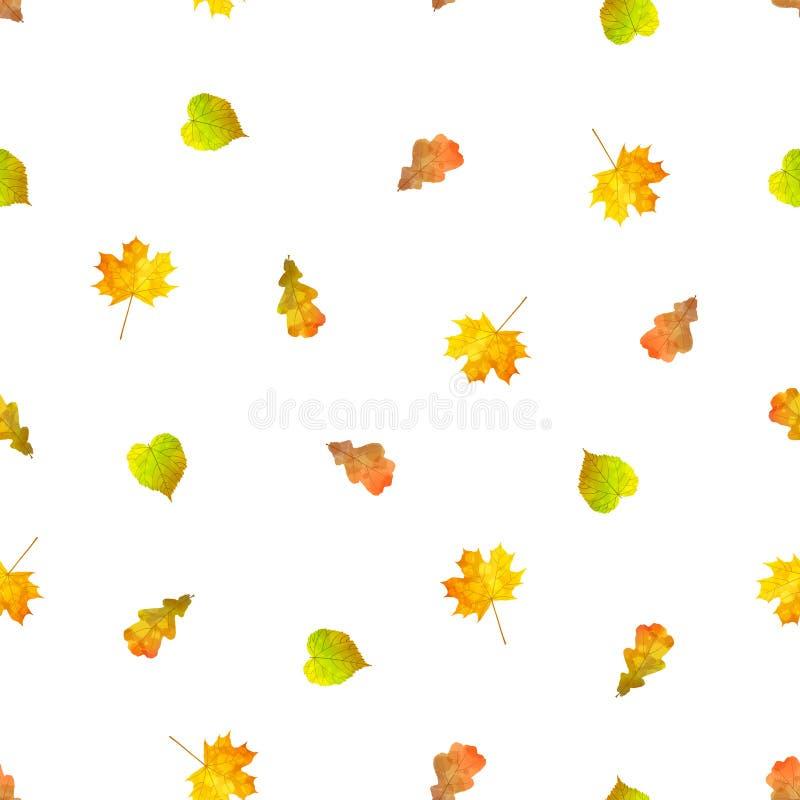 jesień ilustracyjnego liść wzoru bezszwowy wektor ilustracja wektor