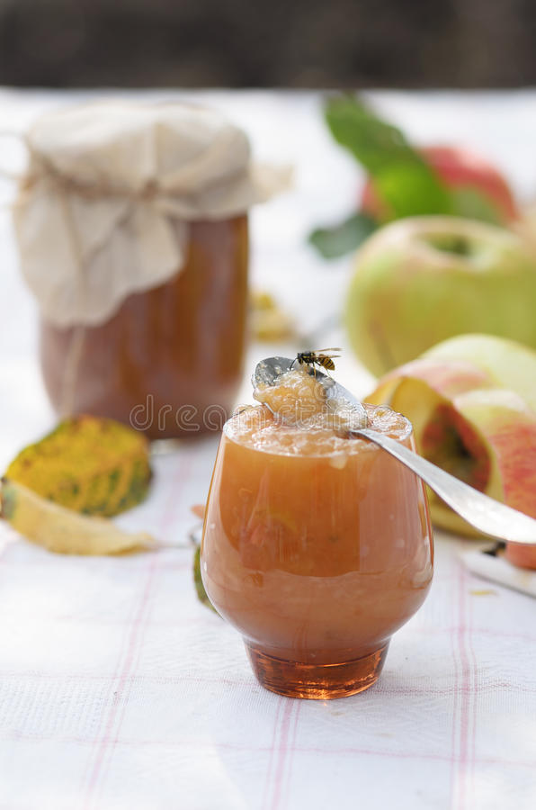 Jesień jabłczany dżem fotografia stock