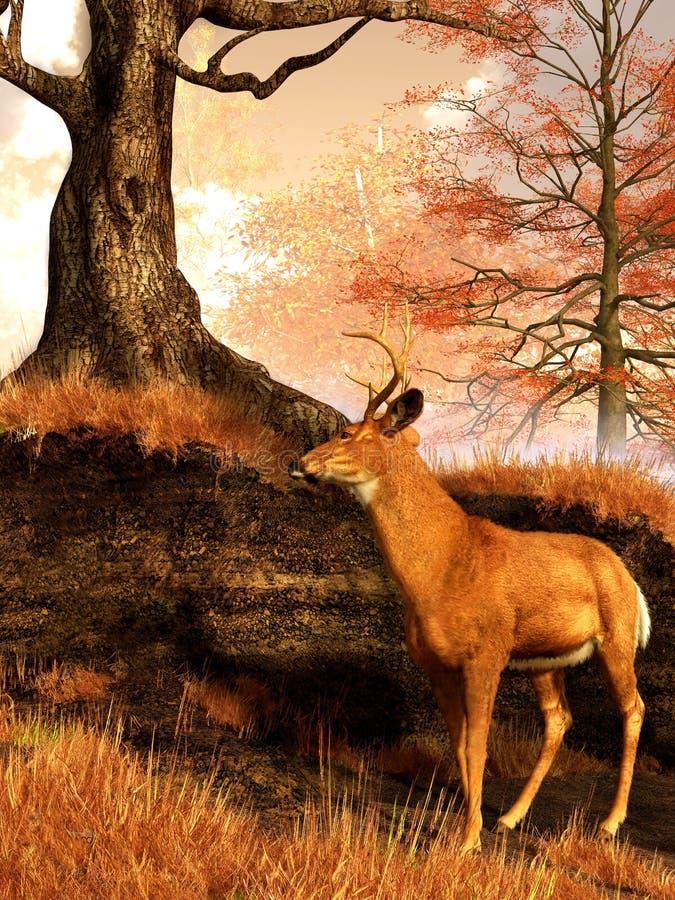 Jesień jeleń royalty ilustracja