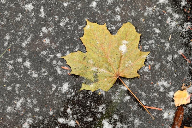 Jesień jest zdjęcia stock