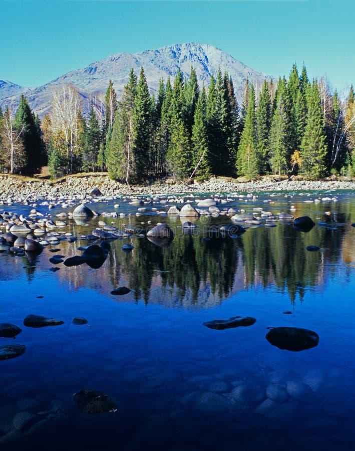jesień jeziora drzewa obraz stock