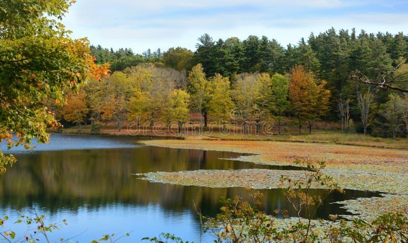 Jesień jeziora sceneria obraz royalty free