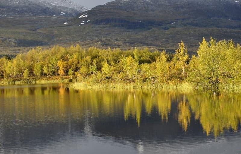 Jesień jeziora sceneria zdjęcie royalty free