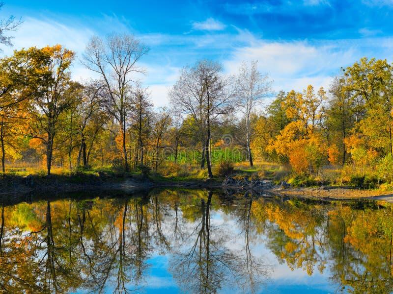 Jesień jezioro drzewa i zdjęcia stock