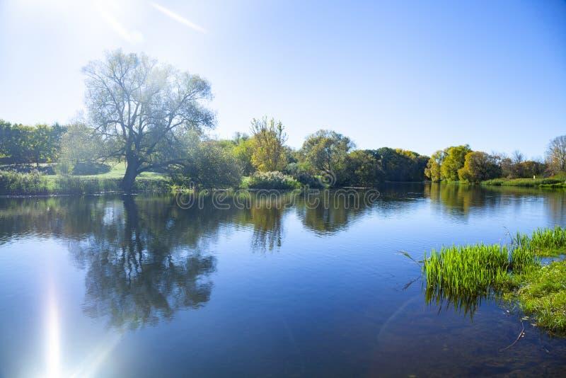 Jesień jezioro na słonecznym dniu zdjęcie royalty free