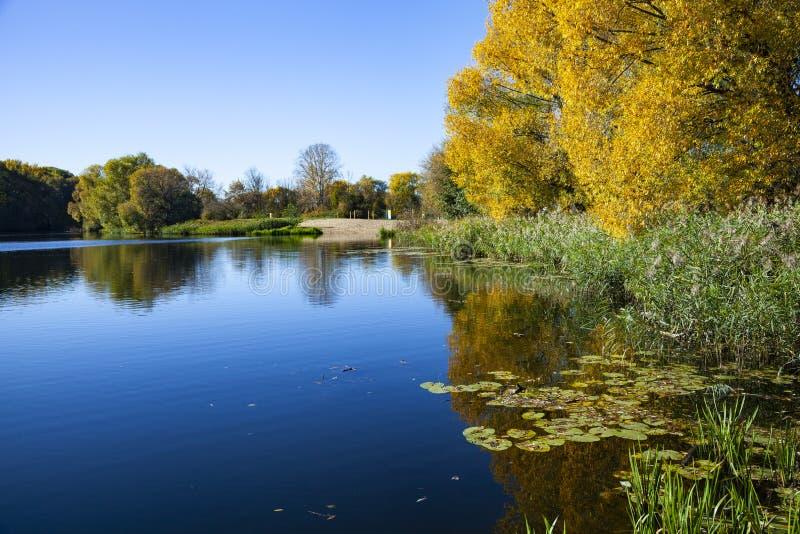 Jesień jezioro na słonecznym dniu zdjęcia stock