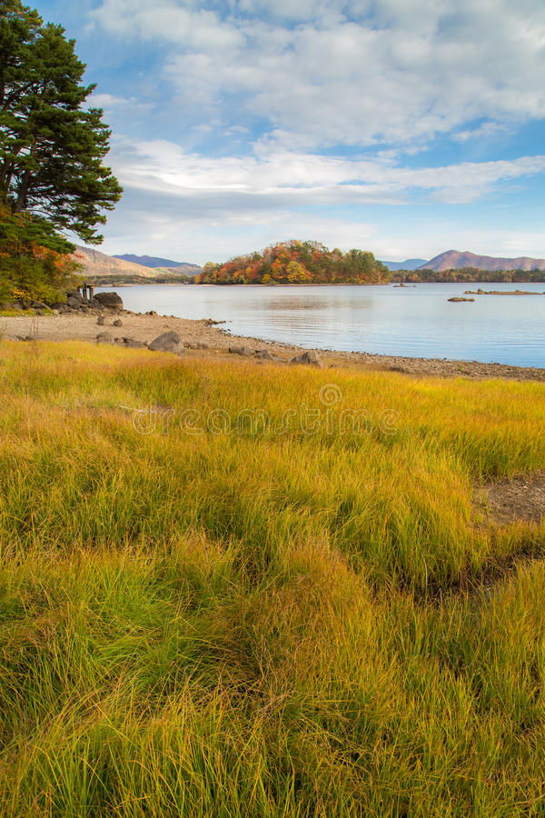 Jesień jezioro przy Japonia jesienią obraz stock