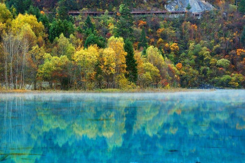 jesień jiuzhaigou jeziora drzewo obrazy stock