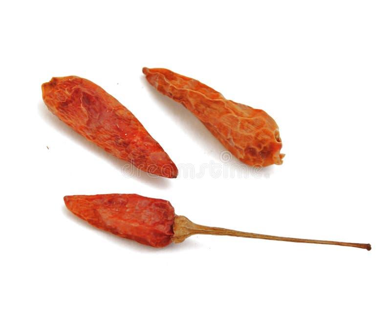 jesień kalorii kasztanów bożych narodzeń nutr dokrętki zdjęcia royalty free