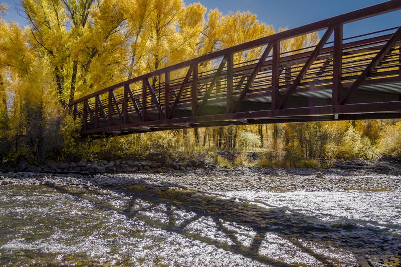 Jesień kolor w San Juan i Skaliste Kolorado góry obraz royalty free
