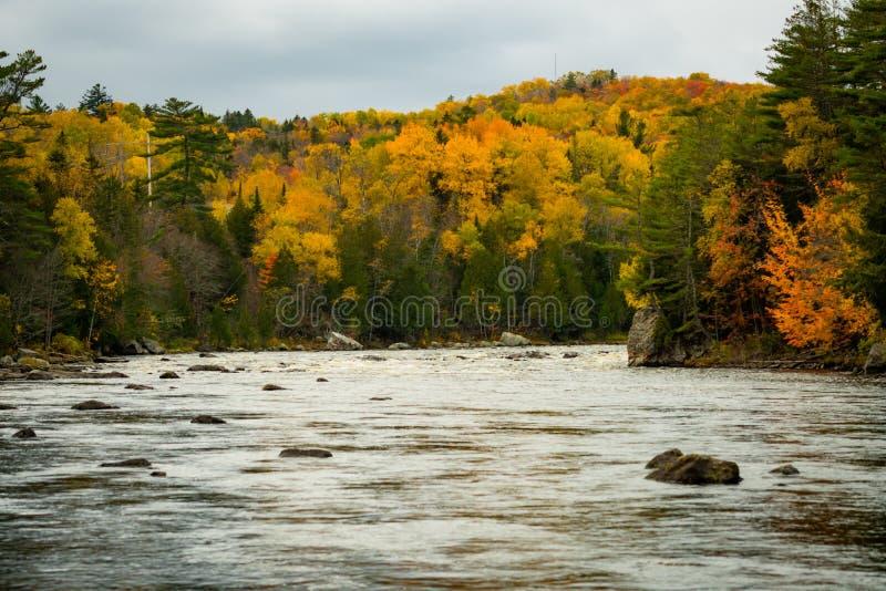 Jesień kolory Jaśnieją w górę brzeg obraz stock