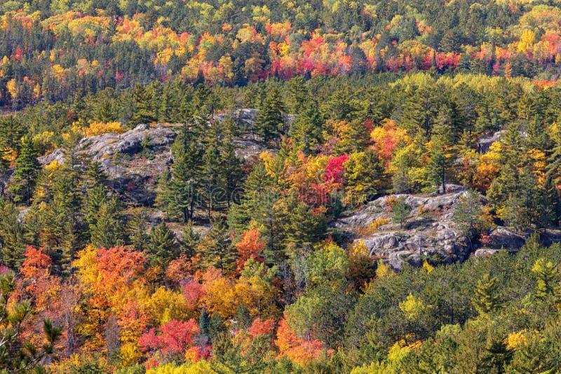 Jesień kolory przy Sugarloaf górą w Marquette Michigan fotografia stock