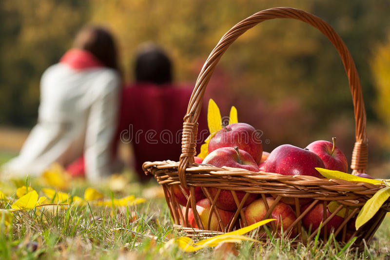 Jesień kosz fotografia stock