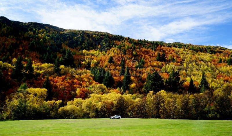 Jesień krajobraz Arrowtown zdjęcie royalty free