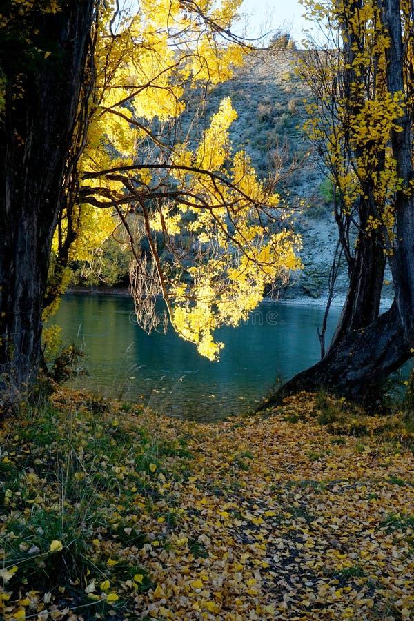 Jesień krajobraz Arrowtown zdjęcie stock