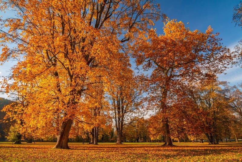 Jesień krajobraz, kasztel parkowy Budatin niedaleki Zilina, Sistani zdjęcie stock
